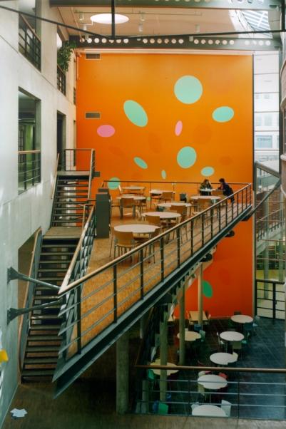 Hoge School Den Haag