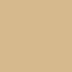 beige-ral-1001