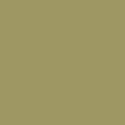 grey-beige-ral-1019