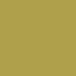 ochre-yellow-ral-1024