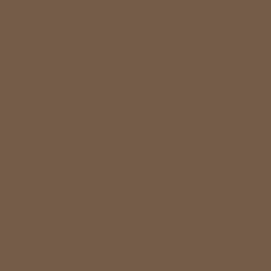 pale-brown-ral-8025