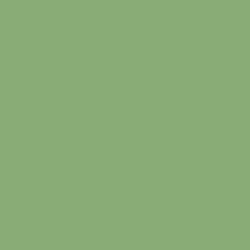 pale-green-ral-6021